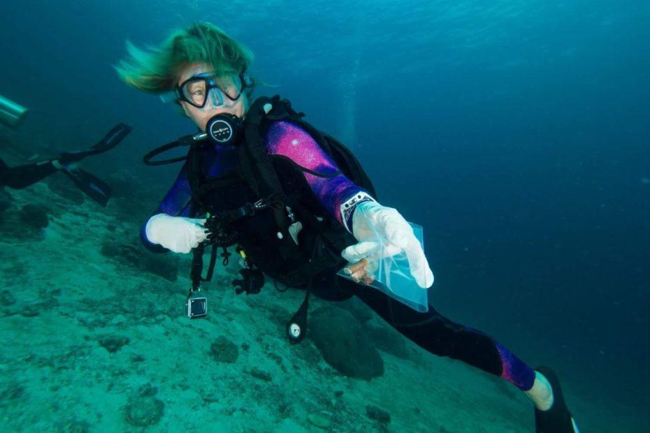 Sandrine Treyvaud Ocean Quest